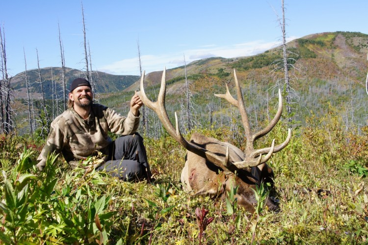 All About Elk Hunting In BC photo