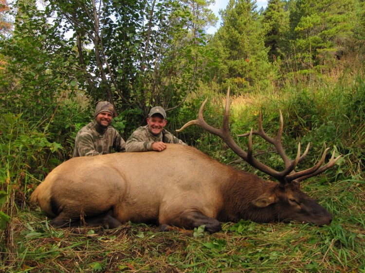 Great Elk Hunting BC photo