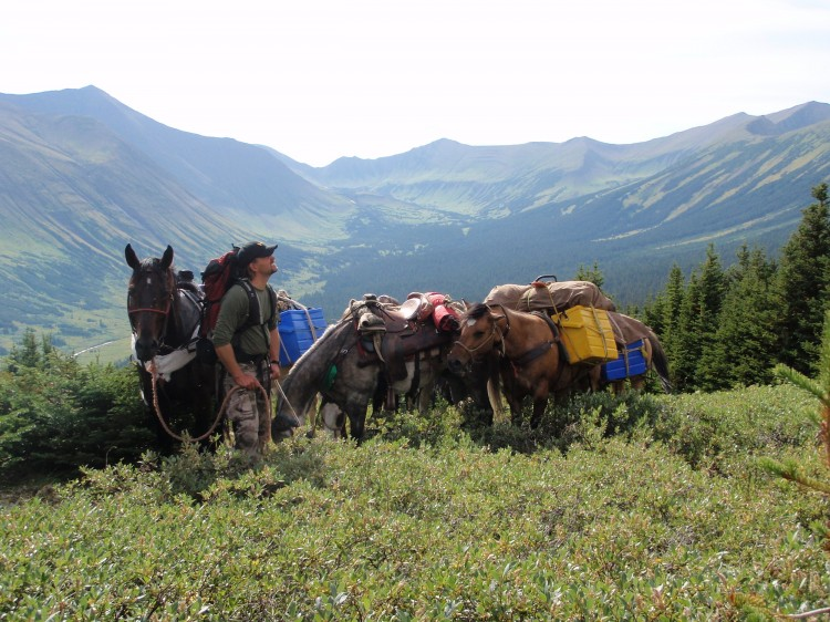 10 day Horseback Combination hunt for Mountain Goat, Moose, and Elk photo