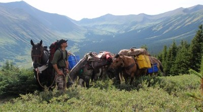10 day Horseback Combination hunt for Mountain Goat, Moose, and Elk